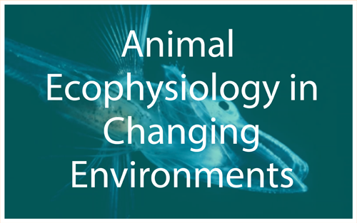 Animal Ecophysiology in Changing Environments