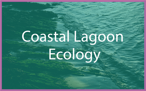 Coastal Lagoon Ecology